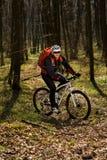 Всадник в действии на встрече горного велосипеда фристайла Стоковая Фотография RF