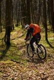 Всадник в действии на встрече горного велосипеда фристайла Стоковые Фото