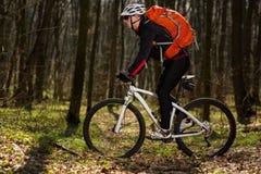 Всадник в действии на встрече горного велосипеда фристайла Стоковое фото RF