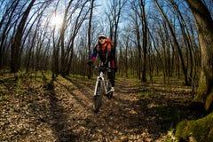 Всадник в действии на встрече горного велосипеда фристайла Стоковое Изображение