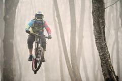 Всадник горного велосипеда скачет от трамплина в туманном лесе, в горах Кавказа Стоковое Изображение RF