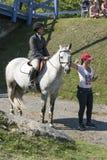 Всадник и тренер лошади Стоковые Изображения RF