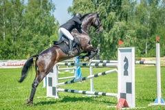 Всадник на лошади шлямбура выставки залива преодолевает высокие препятствия в арене для выставки скача на небо предпосылки голубо Стоковая Фотография