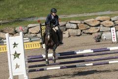 Всадник с скакать лошади Стоковая Фотография