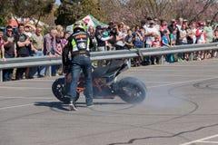 Всадник эффектного выступления мотоцикла Стоковые Изображения