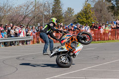 Всадник эффектного выступления мотоцикла - Wheelie Стоковые Фото