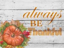 Всегда благодарный и тыква и листь осени на благодарение Стоковые Изображения RF