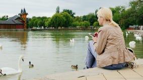 Всегда в касании Молодая женщина отдыхает озером, используя smartphone Близко заплыв лебедей акции видеоматериалы