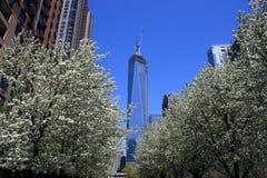 Всемирный торговый центр Стоковая Фотография