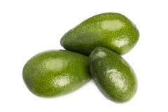 3 всех авокадоа изолированного на белой предпосылке Стоковая Фотография RF