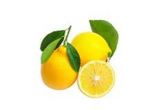 2 всех лимона с листьями и один отрезали лимон Стоковые Изображения RF