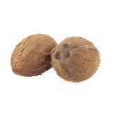 2 всех кокоса изолированного на белизне Стоковое Изображение