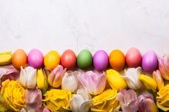 2 всех пасхального яйца принципиальной схемы цыпленока ведра цветут детеныши покрашенные травой помещенные Взгляд сверху Стоковая Фотография RF