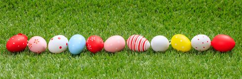 2 всех пасхального яйца принципиальной схемы цыпленока ведра цветут детеныши покрашенные травой помещенные Красочные яичка на зел Стоковая Фотография