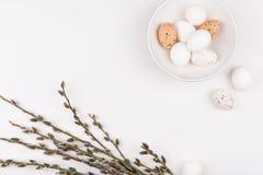 2 всех пасхального яйца принципиальной схемы цыпленока ведра цветут детеныши покрашенные травой помещенные Стильная предпосылка с Стоковое Фото