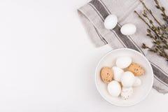 2 всех пасхального яйца принципиальной схемы цыпленока ведра цветут детеныши покрашенные травой помещенные Стильная предпосылка с Стоковые Фото