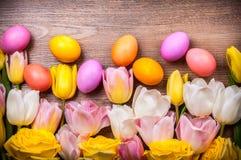 2 всех пасхального яйца принципиальной схемы цыпленока ведра цветут детеныши покрашенные травой помещенные Стоковое Фото