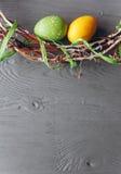 2 всех пасхального яйца принципиальной схемы цыпленока ведра цветут детеныши покрашенные травой помещенные яичка и венок на дерев Стоковые Фото