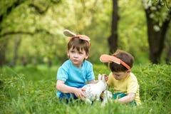 2 всех пасхального яйца принципиальной схемы цыпленока ведра цветут детеныши покрашенные травой помещенные Уши зайчика счастливог Стоковые Изображения RF