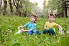 2 всех пасхального яйца принципиальной схемы цыпленока ведра цветут детеныши покрашенные травой помещенные Уши зайчика счастливог Стоковое фото RF