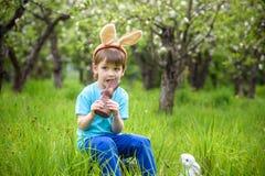 2 всех пасхального яйца принципиальной схемы цыпленока ведра цветут детеныши покрашенные травой помещенные Уши зайчика счастливог Стоковые Фотографии RF