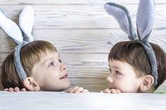 2 всех пасхального яйца принципиальной схемы цыпленока ведра цветут детеныши покрашенные травой помещенные Уши зайчика счастливог Стоковое Изображение