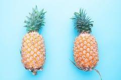 2 всех плодоовощ ананаса на голубой предпосылке цвета, тропическом su Стоковая Фотография RF