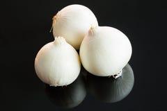 3 всех свежих сырцовых белых лука Стоковое фото RF