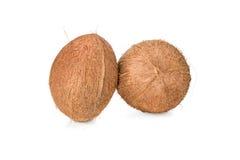 2 всех uncut кокоса Стоковое Фото