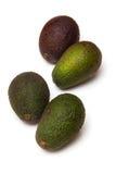 Все авокадоы Стоковое Фото