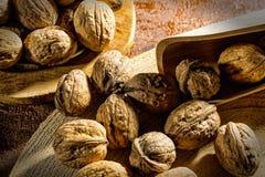 Все грецкие орехи в раковине Стоковая Фотография RF