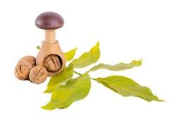 Все грецкие орехи и деревянный Щелкунчик винта изолированные на белой предпосылке Стоковая Фотография RF