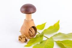 Все грецкие орехи и деревянный Щелкунчик винта изолированные на белой предпосылке Стоковое фото RF