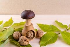Все грецкие орехи на деревянном столе Стоковое фото RF