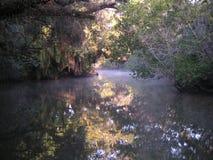 все еще воды Стоковая Фотография RF