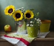 Все еще жизнь с солнцецветами, ведрами и яблоком стоковая фотография rf