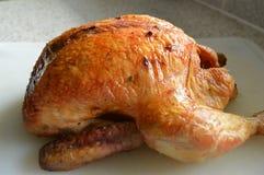 все зажаренное в духовке цыпленком Стоковые Фото