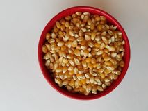 Все зерна изучают - шар unpopped стерженей мозоли в красном шаре, осмотренный от сразу выше, и в крупном плане, правильная сторон стоковые изображения rf