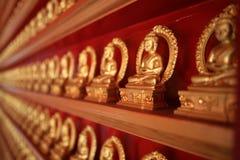 все золото деиствительно светит Стоковое Изображение
