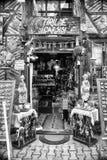 все имеющееся резерва сделанное большинств устрицами starfishes сувенира магазина seashells курортов лето они древесина vare Стоковое фото RF