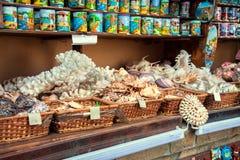 все имеющееся резерва сделанное большинств устрицами starfishes сувенира магазина seashells курортов лето они древесина vare стоковое изображение