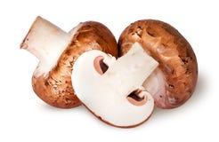 2 все и наполовину коричневые champignons Стоковая Фотография
