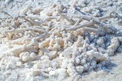 Все объекты в озере Baskunchak покрытом с солью Вода содержит минералы стоковое фото