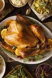 Все домодельное благодарение Турция Стоковые Фото