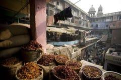 10 1986 2007 2011 все по мере того как дом delhi baha я inaugurated индийские известные люди в ноябре мати лотоса новые служят по Стоковые Фото