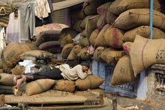 10 1986 2007 2011 все по мере того как дом delhi baha я inaugurated индийские известные люди в ноябре мати лотоса новые служят по Стоковое Изображение RF