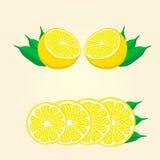 все предмета лимона отрезока предпосылки белое Стоковая Фотография