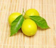 Все плодоовощи лимона Стоковые Фотографии RF