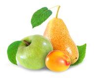 Все плодоовощи сливы, яблока и груши изолированные на белой предпосылке Стоковые Фотографии RF