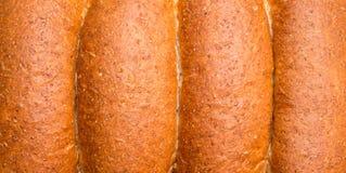 Все плюшки пшеницы Стоковая Фотография